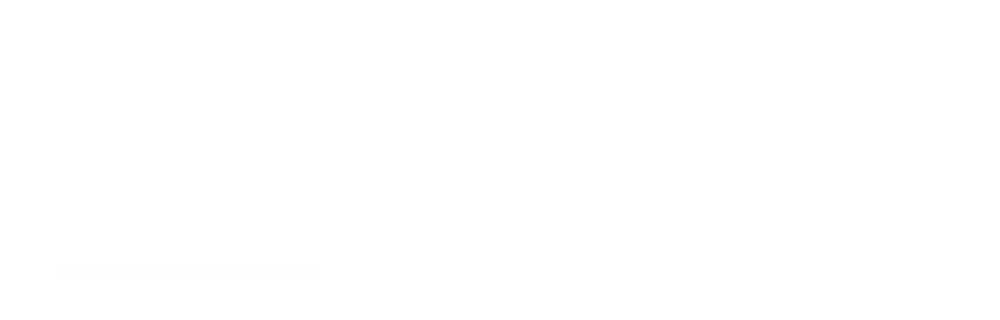 AUDIOPROBE Inc    SPARTAN CUE 110